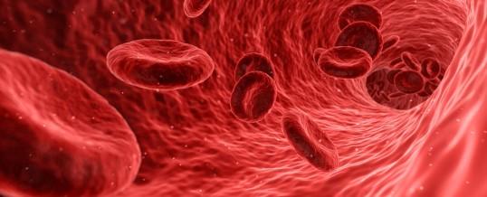 Test sanguin : gamma glutamyl transpeptidase (GGT)