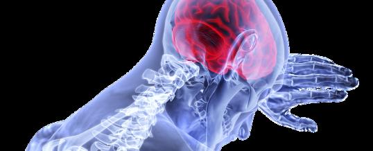 Ictus amnésique : symptômes, traitement et facteurs de risque